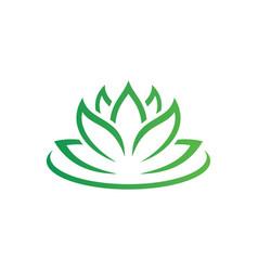 beauty lotus flowers logo image vector image