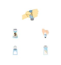 flat icon salt set of flavor sodium salt and vector image vector image