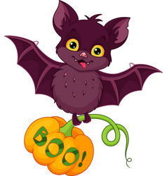 Bat for halloween vector