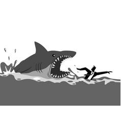 businessman swimming panicly avoiding shark vector image