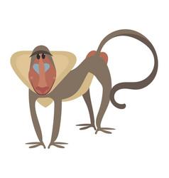 cartoon baboon a baboon vector image