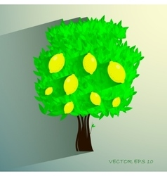 lemon tree isolated on White background vector image