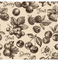 Vintage hand drawn sketch berries seamless pattern vector image