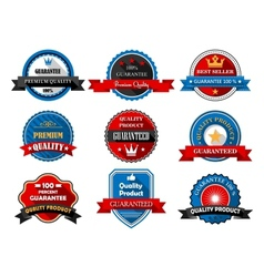 Quality and Premium product flat labels vector image vector image