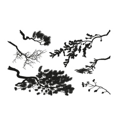The branches of trees Black silhouette vector image vector image