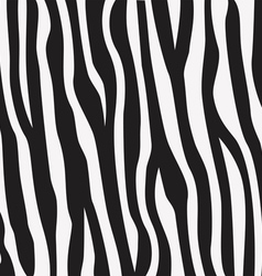animal print zebra texture vector image vector image