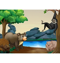 Animals and river vector image