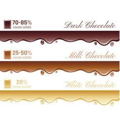 cacao chocolate healthy vector image