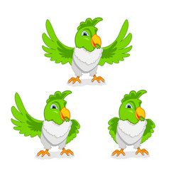 cheerful parrot vector image