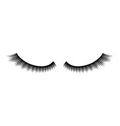 creative of false eyelashes vector image
