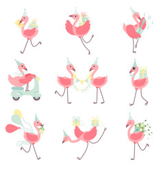 Cute flamingos in party hats set beautiful exotic vector