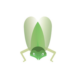 green flying insect on a white background vector image