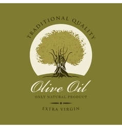 olive tree and olive oil vector image