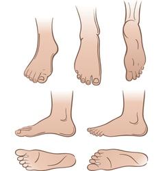 feet vector image