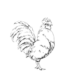 Hand drawn bird chicken sketch new year vector