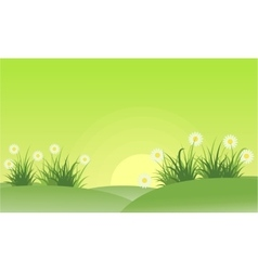 Landscape of flower spring theme vector