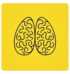Neurology icon Human brain sign vector