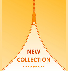 new collection zipper vector image