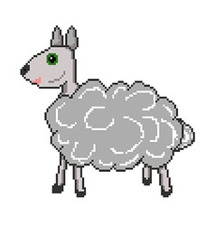 pixel sheep vector image