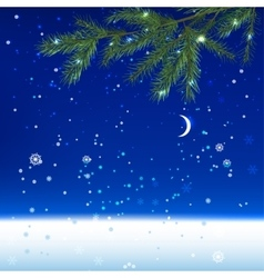 Snow night landscape vector image
