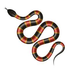Tropical snake vector