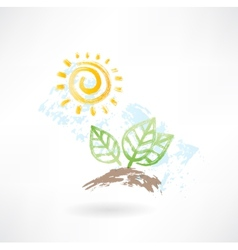 leafs and sun grunge icon vector image