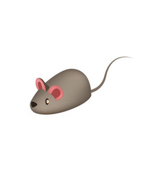 little mouse toy for pets icon vector image
