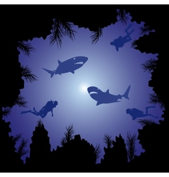 Sharks and scuba divers in the ocean vector image