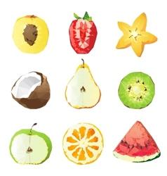 fruit pieces vector image vector image