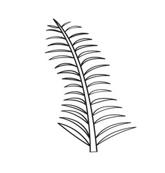 isolated olive branch outline vector image