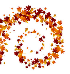 autumn swirl leaves vector image