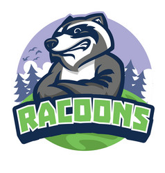 racoon mascot style vector image
