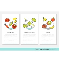 Fruits and Vegetables Thin Line Business Brochures vector image