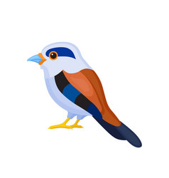Bird with colorful feathers isolated vector