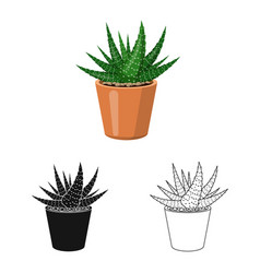 cactus and pot sign vector image