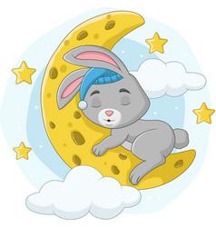 Cartoon barabbit sleeping on moon vector