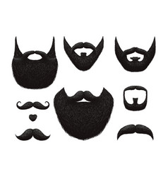 hand drawn beards and mustaches collection vector image
