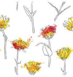 set of drawing calendula flowers vector image