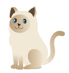 Siamese cat design vector