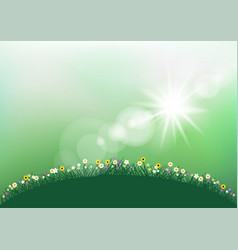 spring sunshine grass and flowers vector image