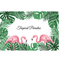 Tropical border frame green leaves pink flamingos vector