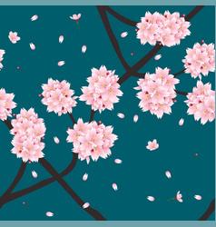 sakura cherry blossom flower on indigo green teal vector image vector image