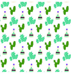 cactus tequila seamless pattern vector image