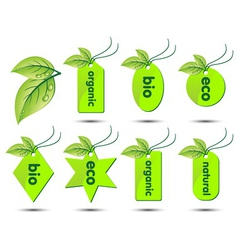 Collection ecological stickers vector