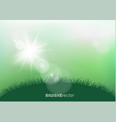 spring sunshine light and grass vector image