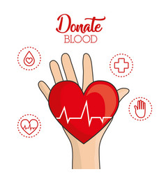 blood donation design vector image