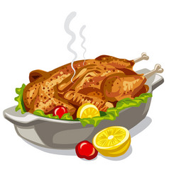 roasted baked chicken vector image