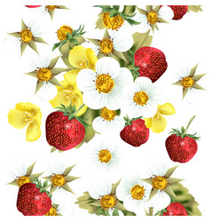 floral seamless pattern with strawberry berries vector image