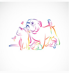 group pets - dog cat bird macaw chameleon vector image