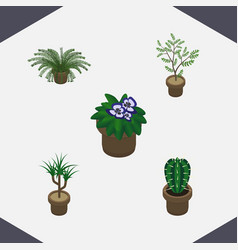 Isometric houseplant set of flowerpot houseplant vector